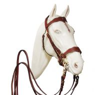 Working Portuguese single bridle